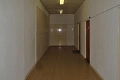 společná chodba, od schodiště odděleno dveřmi